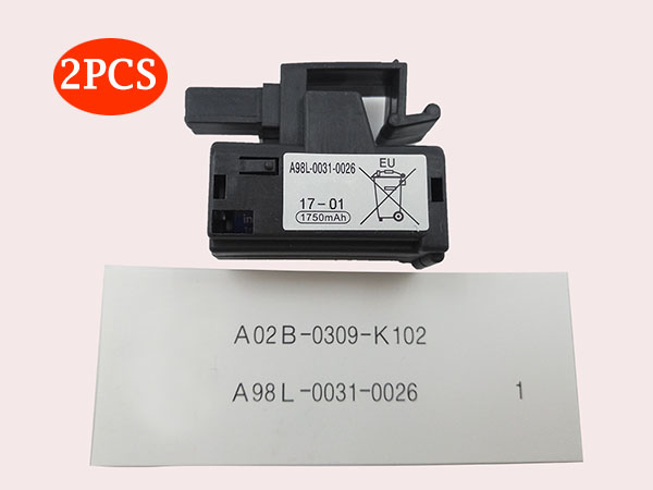 p_A98L-0031-1